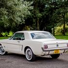 Ref 40 1965 Ford Mustang Notchback -