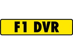 Navigate to Registration F1 DVR (F1 DRIVER)