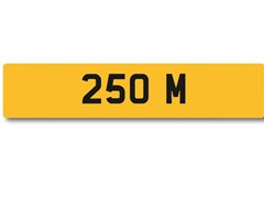 Navigate to Lot 104 -   Number Plate 250 M