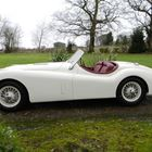 1952 Jaguar XK120 Roadster -