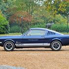 Ref 33 1965 Ford Mustang GT350 Fastback Tribute -