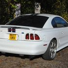 Ford Mustang Cobra -