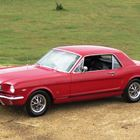 REF 82 1966 Mustang Coupe -
