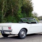 Ford Mustang Convertible -
