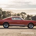 Ref 139 1965 Ford Mustang Fastback -