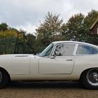 Jaguar E-Type Fixedhead Coupe (white) -